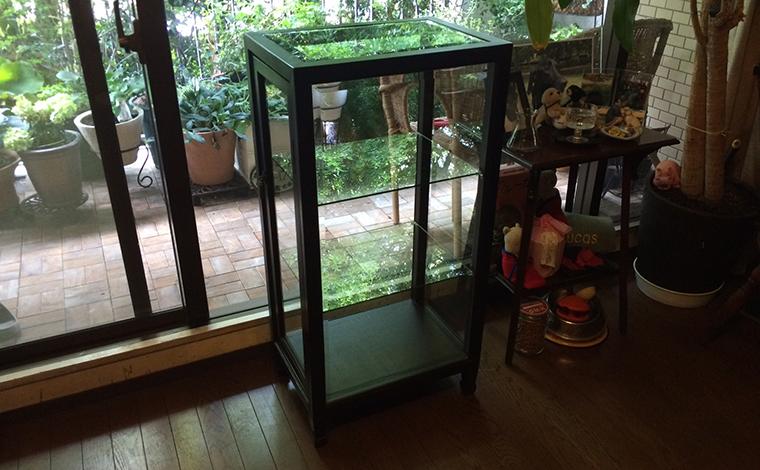 chinese glass showcase / 中国のガラスショーケース
