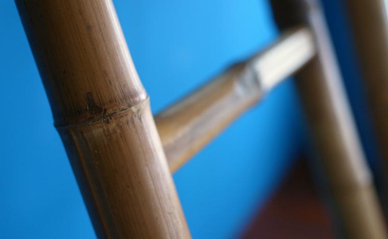 bamboo ladder / 竹のはしご
